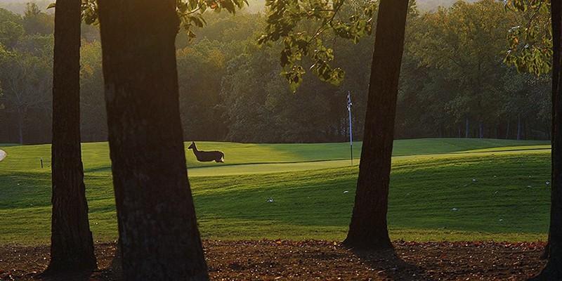 Tennessee Mountain Golf Fairfield Glade